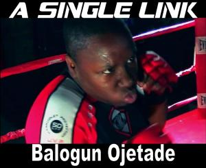 "Promo Poster for MMA Pulp novel, ""A Single Link"" by Balogun Ojetade"