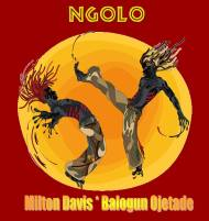 "DREAM-CASTING ""NGOLO"": An Afrikan Martial Arts Sci-Fi Film Competes In The Urban Action Showcase!"