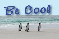 BE COOL! Afrofuturism and the Ancient Afrikan MartialArts!